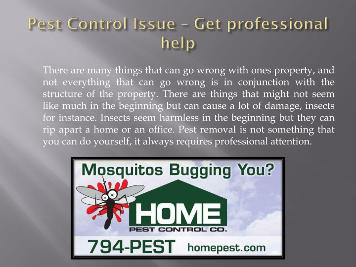 Pest control issue get professional help