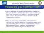 therapeutic day treatment tdt13