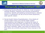 therapeutic day treatment tdt18