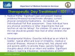 therapeutic day treatment tdt19