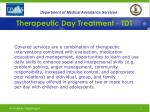 therapeutic day treatment tdt2