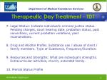 therapeutic day treatment tdt21