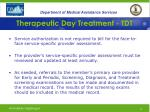 therapeutic day treatment tdt23