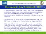 therapeutic day treatment tdt24