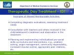 therapeutic day treatment tdt25