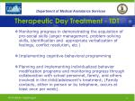 therapeutic day treatment tdt26