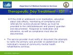 therapeutic day treatment tdt28