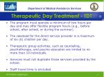 therapeutic day treatment tdt33