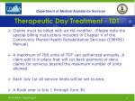 therapeutic day treatment tdt37