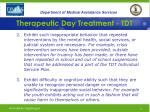 therapeutic day treatment tdt9