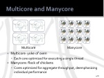 multicore and manycore