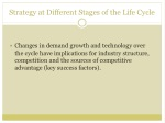 strategy at different stages of the life cycle