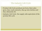 the industry life cycle