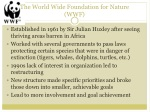 the world wide foundation for nature wwf