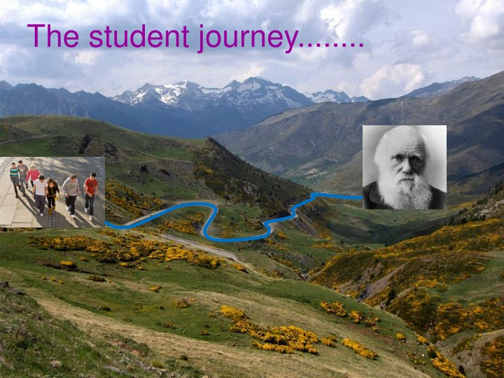 The student journey