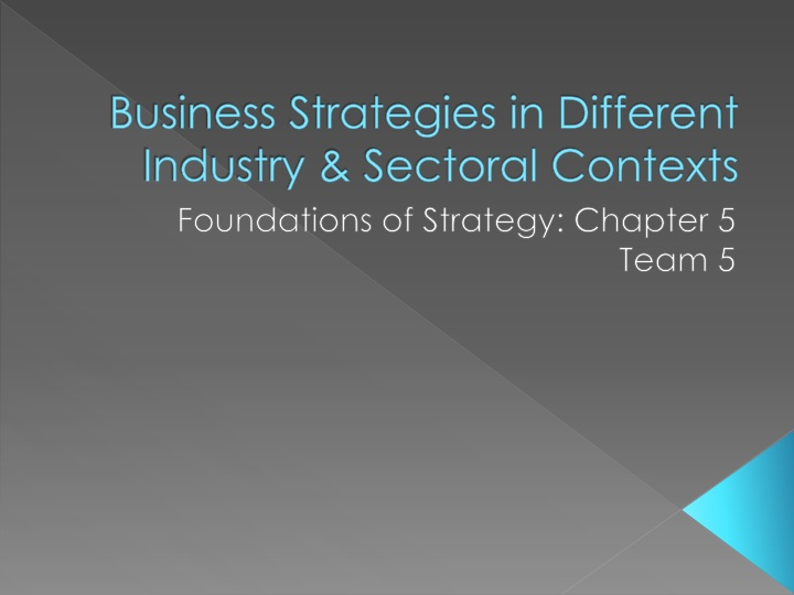 Business strategies in different industry sectoral contexts