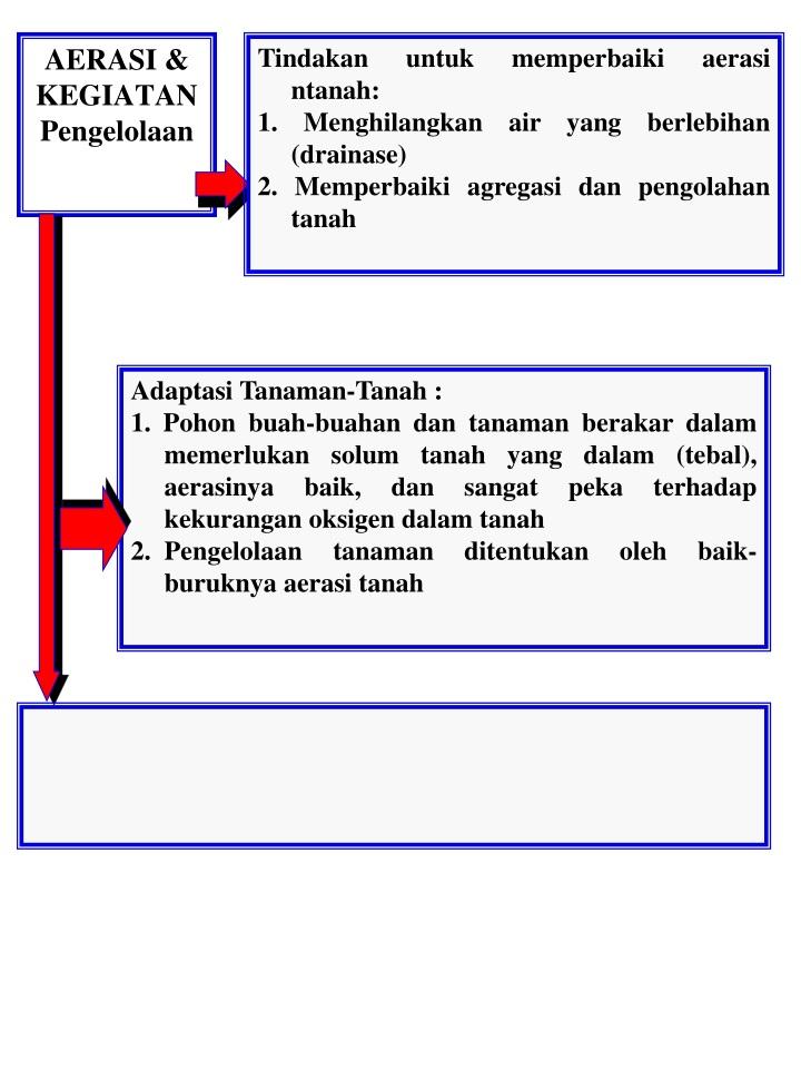 Tindakan untuk memperbaiki aerasi ntanah: