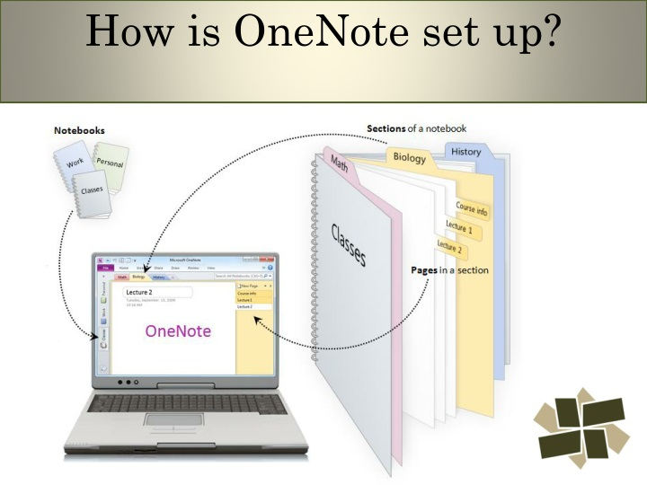 How is OneNote set up?