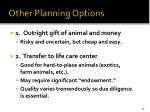other planning options