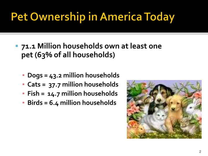 Pet ownership in america today