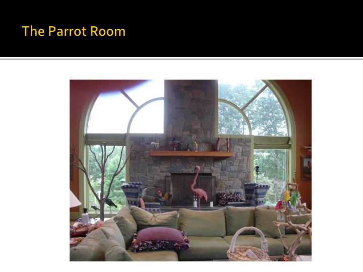 The Parrot Room