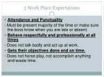 3 work place expectations
