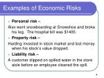 examples of economic risks