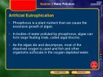 artificial eutrophication3