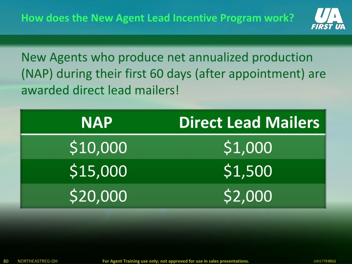 How does the New Agent Lead Incentive Program work?