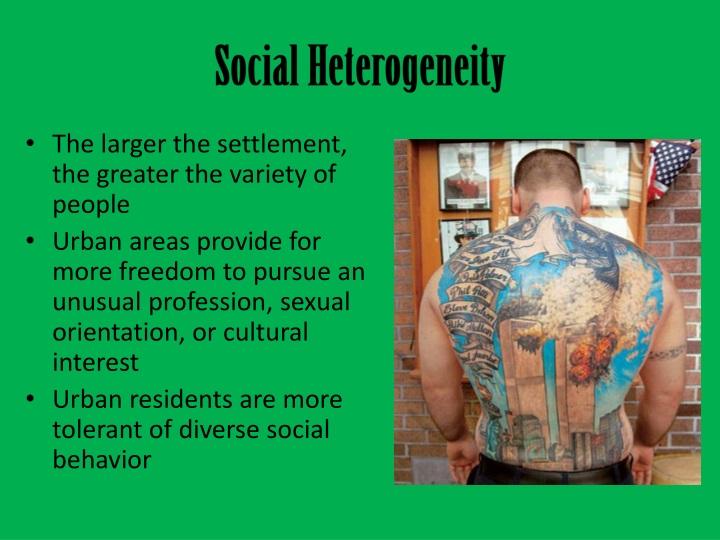 Social Heterogeneity
