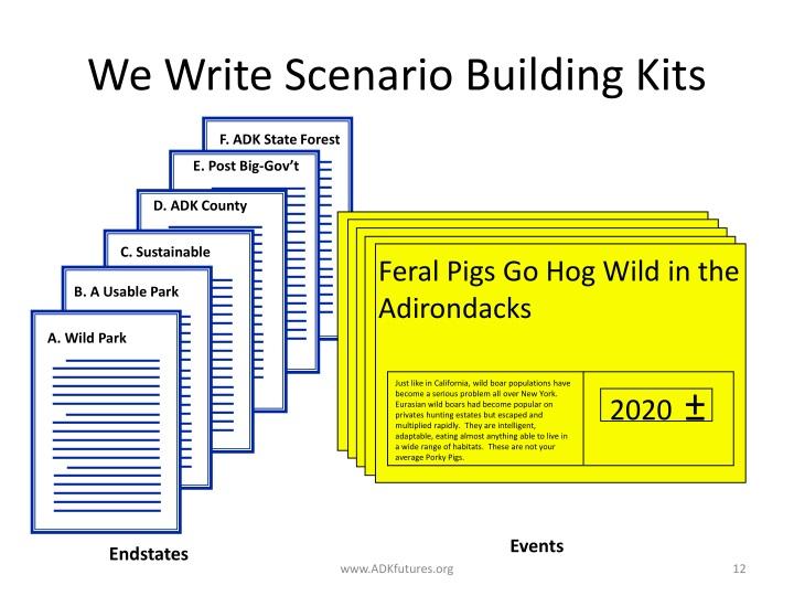Feral Pigs Go Hog Wild in the Adirondacks
