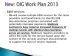new oig work plan 2013