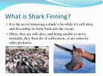what is shark finning