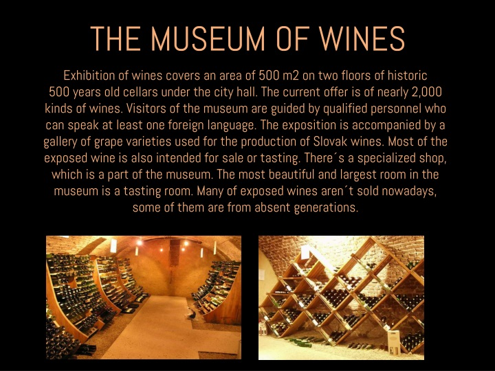 THE MUSEUM OF WINES