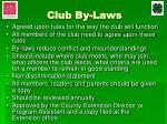 club by laws