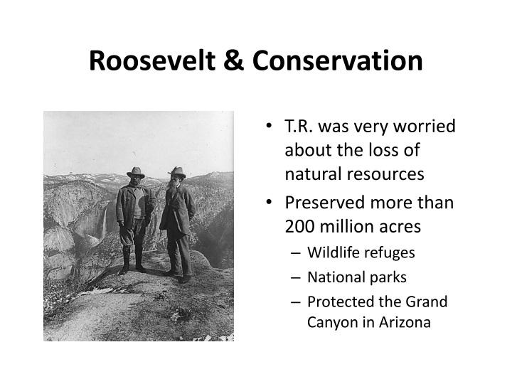 Roosevelt & Conservation