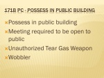 171b pc possess in public building