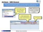 attribute wbs element