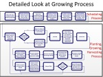 detailed look at growing process
