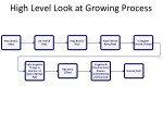 high level look at growing process