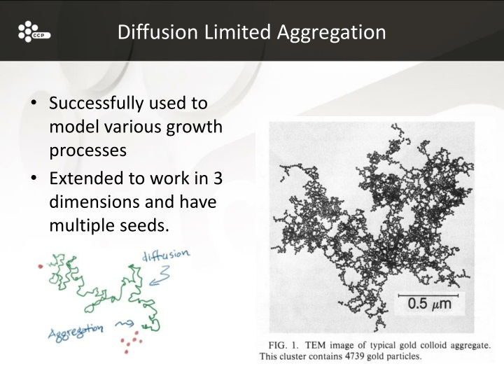 Diffusion Limited Aggregation