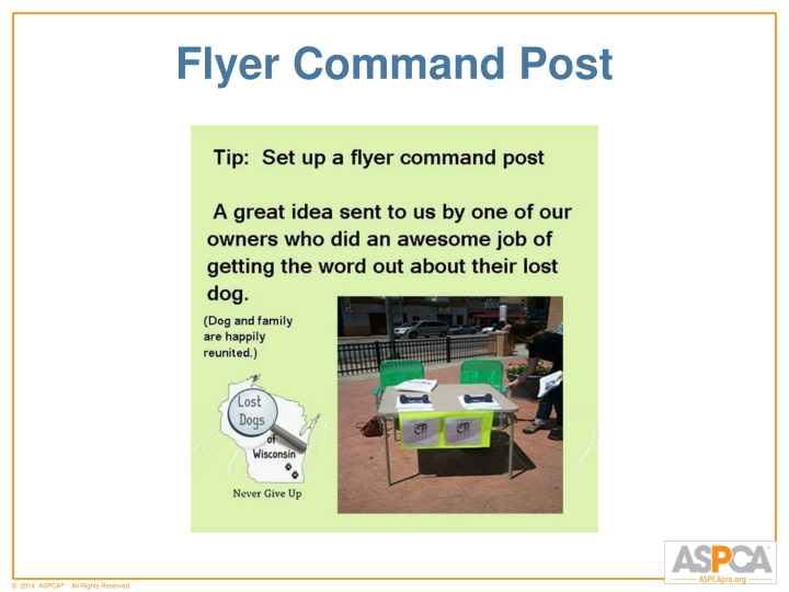 Flyer Command Post