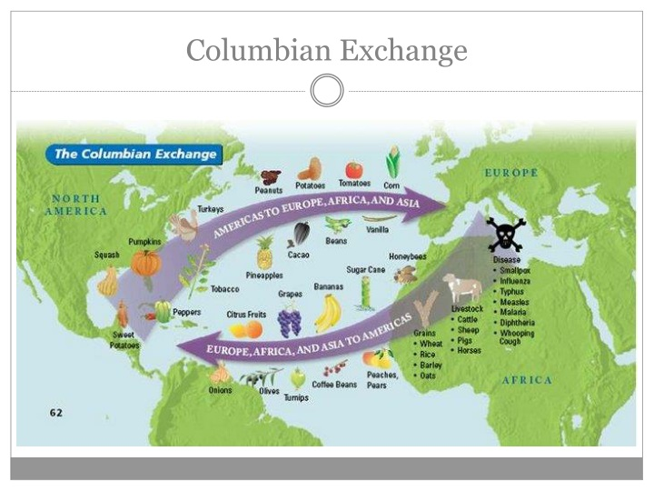 review columbian exchange Apush review: key concept 12(the columbian exchange) everything you need to know about key concept 12 and the columbian exchange to succeed in apush.