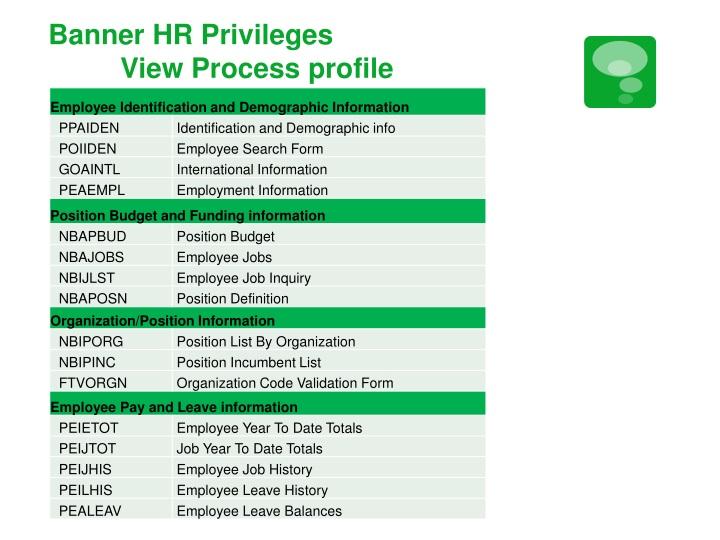 Banner HR Privileges