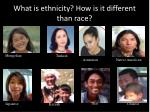 what is ethnicity how is it different than race