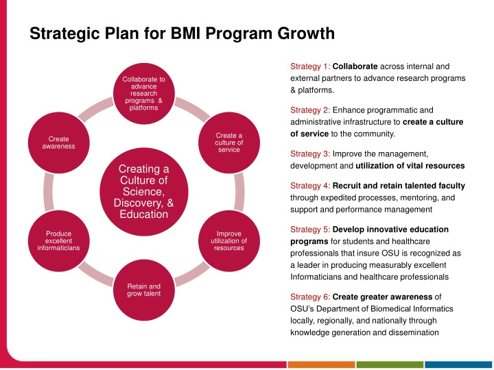 Strategic Plan for BMI Program Growth