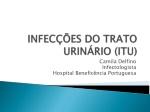 infec es do trato urin rio itu
