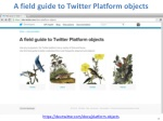 a field guide to twitter platform objects