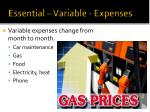 essential variable expenses