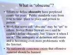what is obscene